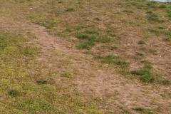 5 - Spielplatz Bothfelder Anger